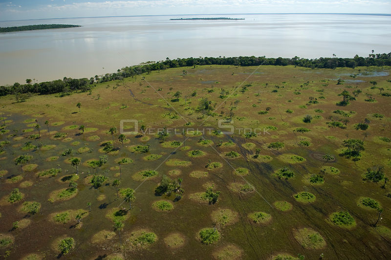 Aerial view of the banks of Lake Rogaguado during the flood season, in the region of the great lakes of the Northern Beni Department of Northeastern Bolivia.