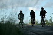Silhouette of men biking