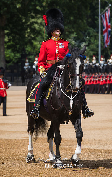 Trooping_the_Colour_8759