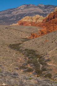 Red-Rocks-300dpi-fullsize-34