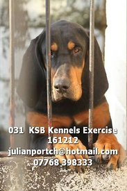 031__KSB_Kennels_Exercise_161212