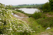 Reclaimed quarry pit now open as a nature reserve, Yorkshire, UK