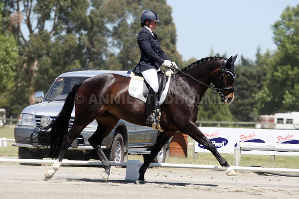 FEI World Dressage Challenge photos