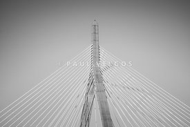Boston Zakim Bridge Black and White Photo