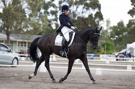 SI_Dressage_Champs_260114_029