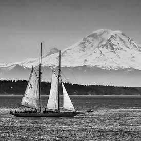 THE MYSTIQUE OF PUGET SOUND