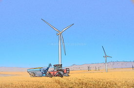 Windtowers and Harvest