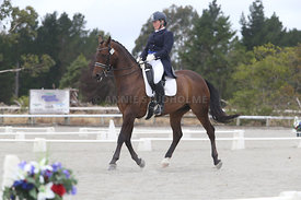 SI_Festival_of_Dressage_310115_Level_8_MFS_1128