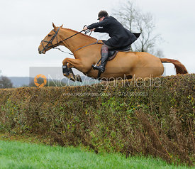 jumping a hedge near East End