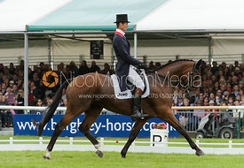 William Fox-Pitt and PARKLANE HAWK - dressage phase,  Land Rover Burghley Horse Trials, 6th September 2013.