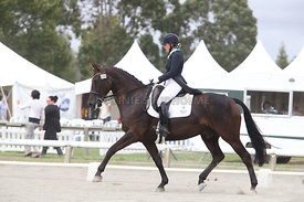 SI_Festival_of_Dressage_310115_Level_6_7_MFS_0639