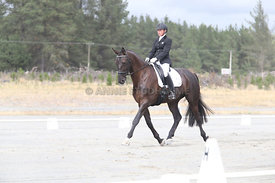 SI_Festival_of_Dressage_310115_Level_1_Champ_0680
