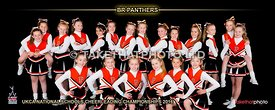 15_BR_Panthers