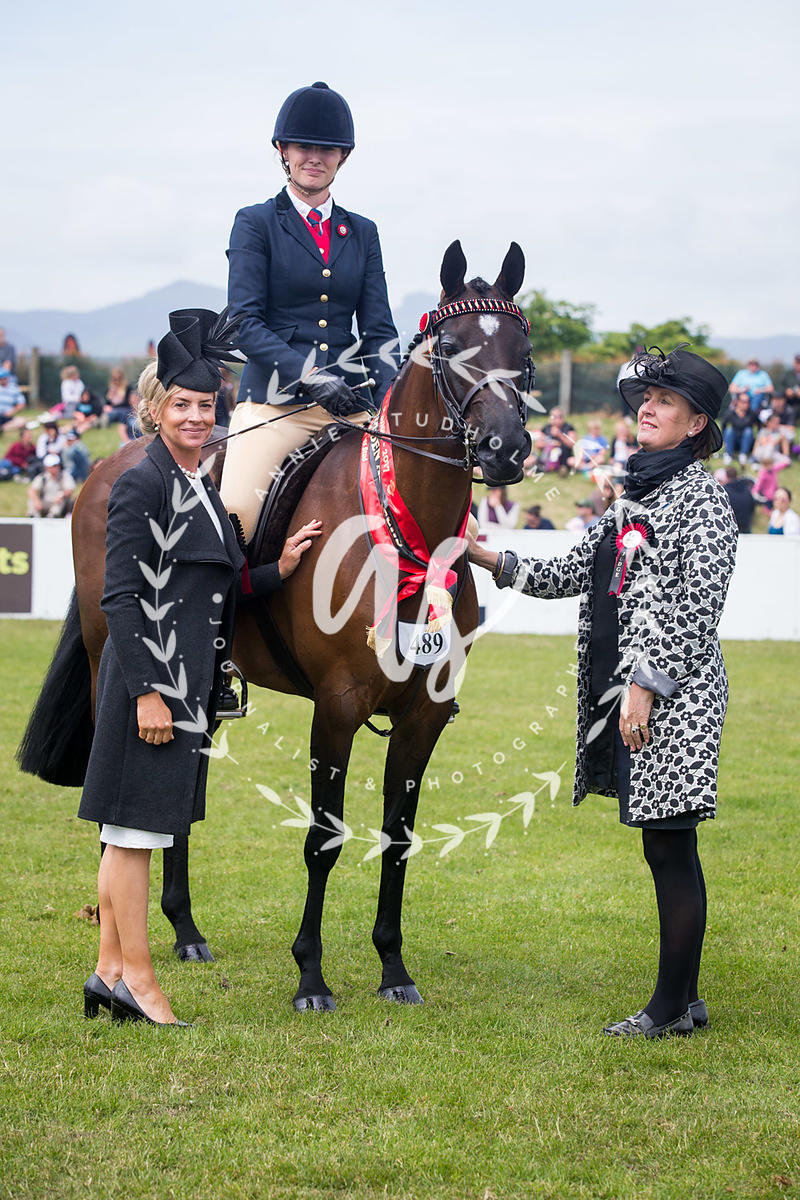 Supreme Champion Ridden All Breeds photos