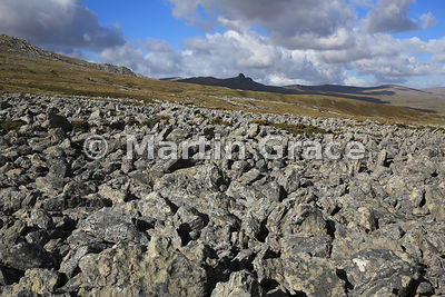 Stone Run, north of Mount Kent, East Falkland, Falkland Islands