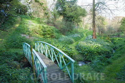 Painted blue bridge crosses the stream that runs through the valley garden. Brilley Court Farm, Whitney-on-Wye, Herefordshire, UK