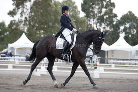 SI_Dressage_Champs_260114_030
