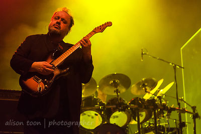 Steve Rothery, guitars, Marillion, Wolves, 2015