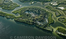 Aerial, Coastal Marsh, Tampa Bay, Florida