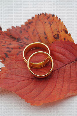 Wedding rings on red leaves with copy space