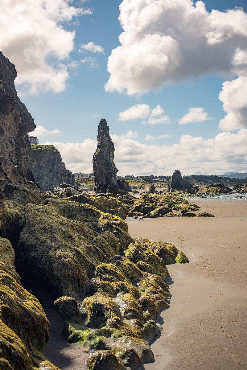 Oregon_Coast-42