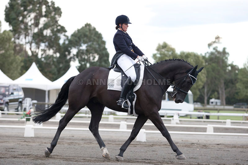 SI_Dressage_Champs_260114_031