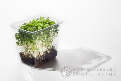 Green Cress in plastic supermarket packaging.