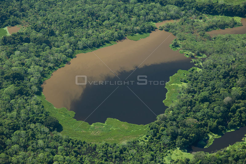 "Aerial view of Amazon ""várzea"" rainforest of Mamoré River, during the great 2008 flood, to the North of Trinidad city, in the Beni Department, Eastern Bolivia."
