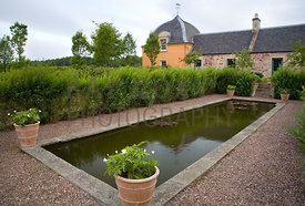 Formal pond surrounded by willow hedge