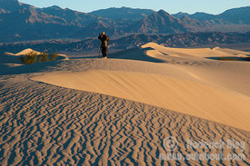 Early Morning Photo of the Mesquite Sand Dunes
