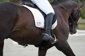 SI_Dressage_Champs_260114_032