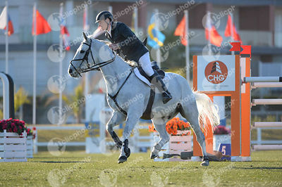 Runge Ralf, (Ger) and SUMMERSAULT