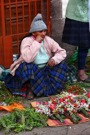 Lady selling crosses made out of local plants and pieces of cactus for Easter in market , Cusco , Peru