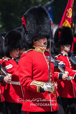 Trooping_the_Colour_8805B