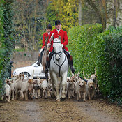 The Cottesmore Hunt at Parva Lodge 19/1 photos