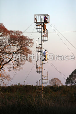 Observation tower, SouthWild Pantanal Lodge, North Pantanal, Mato Grosso, Brazil