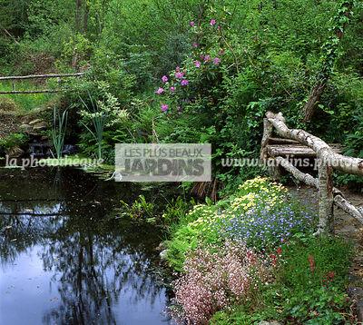 la phototh que les plus beaux jardins plantes aquatiques le plus grand choix de photos de. Black Bedroom Furniture Sets. Home Design Ideas