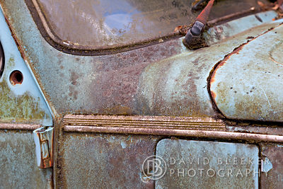 Rusty Beetle, London