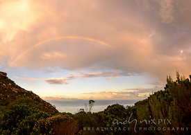 A rainbow and softly lit pink and orange clouds above a fynbos-covered hill, Mountains and sea in the distance.
