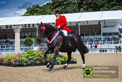 Royal_Windsor_Horse_Show_2017_025