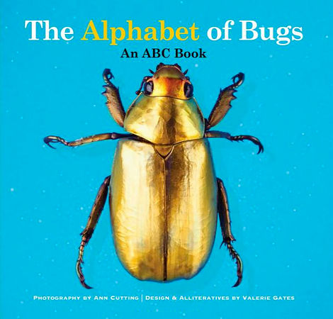 alphabet_of_bugs_tear