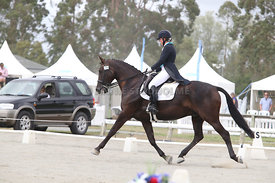 SI_Festival_of_Dressage_310115_Level_6_7_MFS_0644