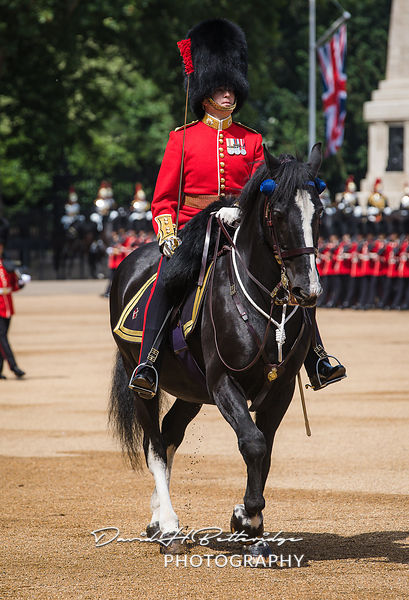 Trooping_the_Colour_8760