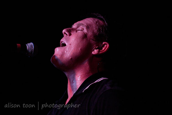The English Beat photos