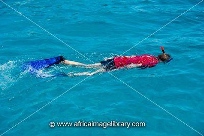 Wasini Island Pictures Snorkelling at Wasini Island