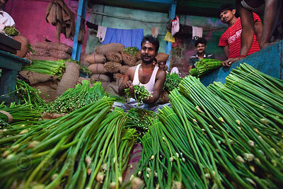 Unidentified vegetable for sale at the Kole wholesale veg market in Bowbazar, Kolkata, India. Kole is one of the largest vegetable markets in the world.