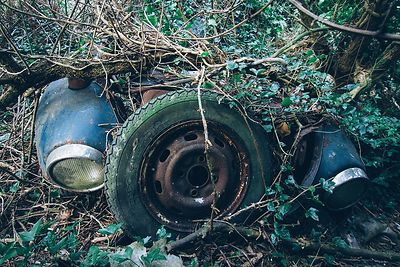 Abandoned_car_-_When_mother_nature_takes_over_-_louth