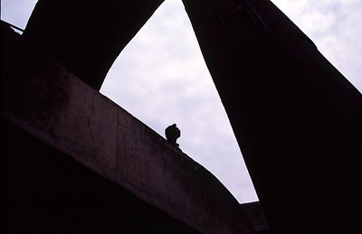 India - Chandigarh - A man is silhouetted against the sky