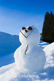 Happy Snowman at Mount St. Helens