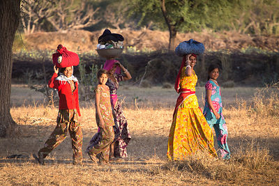 Ladies and girls carry laundry on their heads on a farm in Picholiya village, Rajasthan, India